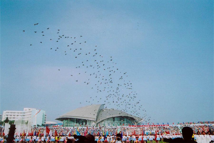 China-Doves